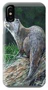 Otter On Branch IPhone Case