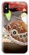 Out From Chrysalis IPhone Case