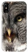Owl 6 IPhone Case