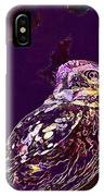 Owl Little Owl Bird Animal  IPhone Case
