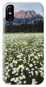 Ox-eyed Daisies And Cascade Mountain IPhone Case
