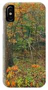 Ozark Forest In Fall 2 IPhone Case