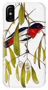 pa TonyOliver AustralianBirds 13 MistletoeBird Tony Oliver IPhone Case