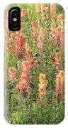 Paintbrush Beauties IPhone Case