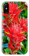 Paintbrush On Highline Trail In Glacier National Park-montana   IPhone Case