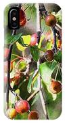 Painted Berries IPhone Case