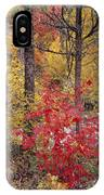 Painted Forest IPhone Case