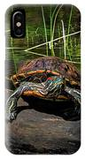 Painted Turtle Sunning Itself On A Log IPhone Case