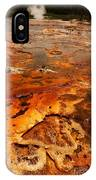 Painting Of Nature IPhone Case
