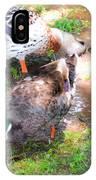 Pair Of Mallard Duck 4 IPhone Case