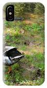 Pair Of Mallard Duck 6 IPhone Case