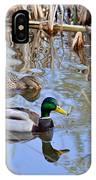 Pair Of Mallard Ducks IPhone Case
