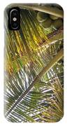 Palm Collection - Coconuts Are Fine IPhone Case