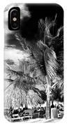 Palm Days In Punta Cana IPhone Case