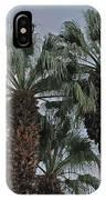 Palm Desert Palms  IPhone Case