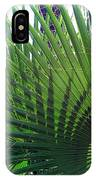 Palm Tree, Big Leafs IPhone Case
