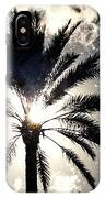 Palm Tree In The Sun #3 IPhone Case