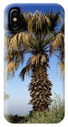 Palm Trees Growing Along The Beach IPhone Case