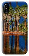 Palm Trees On The Water IPhone Case