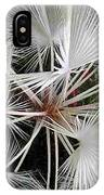 Palm Wonderful IPhone Case