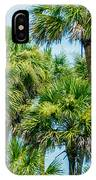 Palmetto Palm Trees In Sub Tropical Climate Of Usa IPhone Case