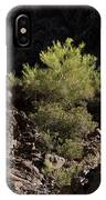 Palo Verde Spotlight-sq IPhone Case