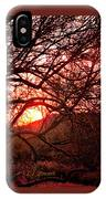 Palo Verde Sunset IPhone Case