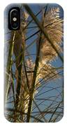 Pampas Grass At Sunset IPhone Case