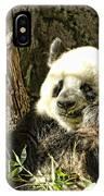 Panda Breakfast IPhone Case