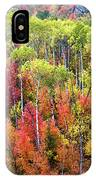 Panoply Of Autumn Color IPhone Case