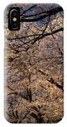Panorama Of Forest Of Sakura Japanese Flowering Cherry Trees Wit IPhone Case