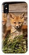 Panoramic Fox Kits IPhone Case