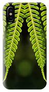 Panoramic Veil Of Ferns IPhone Case