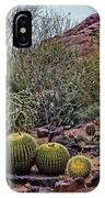Papago And Barrels IPhone Case