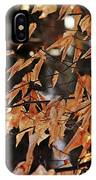 Papery Beech Leaves IPhone Case