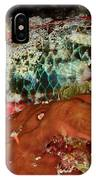 Parrot Fish On Night Dive IPhone Case