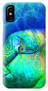 Parrotfish - Rainbow Spirit IPhone Case