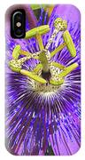Passion Flower 2 IPhone Case