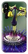 Passion For Purple  IPhone Case