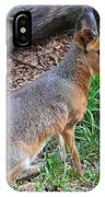 Patagonian Cavy IIi IPhone Case