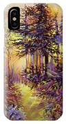 Path Of Illusions IPhone Case