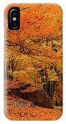 Path Through New England Fall Foliage IPhone X Case