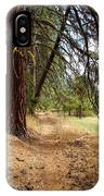 Path To Enlightenment 2 IPhone Case