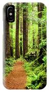 Path To Peace IPhone Case