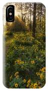 Path To The Golden Light IPhone Case