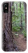 Pathway Through A Redwood Forest On Mt Tamalpais IPhone Case