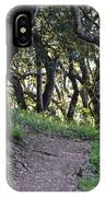 Pathways IPhone Case