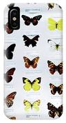 Pattern Made Out Of Many Different Butterfly Species IPhone Case