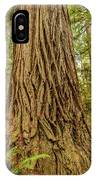 Patterned Redwood IPhone Case