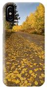 Paved In Gold IPhone Case